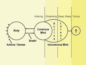 circle-chart-small-YELLOW-WDDS